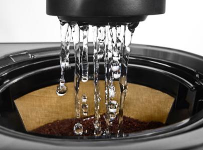 Filter coffee machine shower head